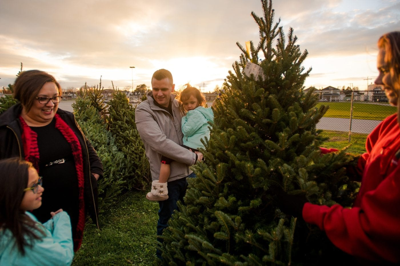 A Christmas Story Rooted In York Our York Media